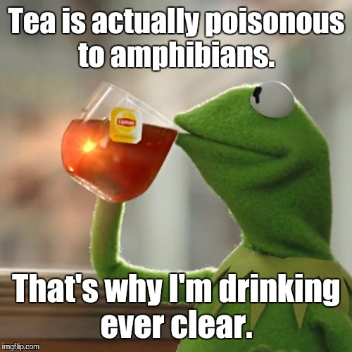 But Thats None Of My Business Meme | Tea is actually poisonous to amphibians. That's why I'm drinking ever clear. | image tagged in memes,but thats none of my business,kermit the frog | made w/ Imgflip meme maker