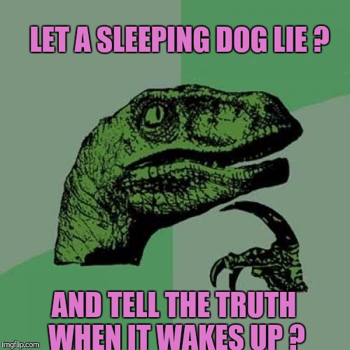 Dogs! What To Do ??? | LET A SLEEPING DOG LIE ? AND TELL THE TRUTH WHEN IT WAKES UP ? | image tagged in memes,philosoraptor | made w/ Imgflip meme maker