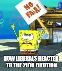 Krusty Krab is unfair | HOW LIBERALS REACTED TO THE 2016 ELECTION | image tagged in krusty krab is unfair | made w/ Imgflip meme maker