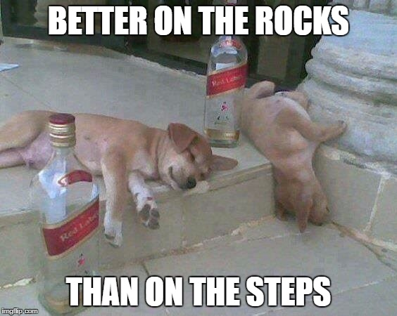 BETTER ON THE ROCKS THAN ON THE STEPS | made w/ Imgflip meme maker
