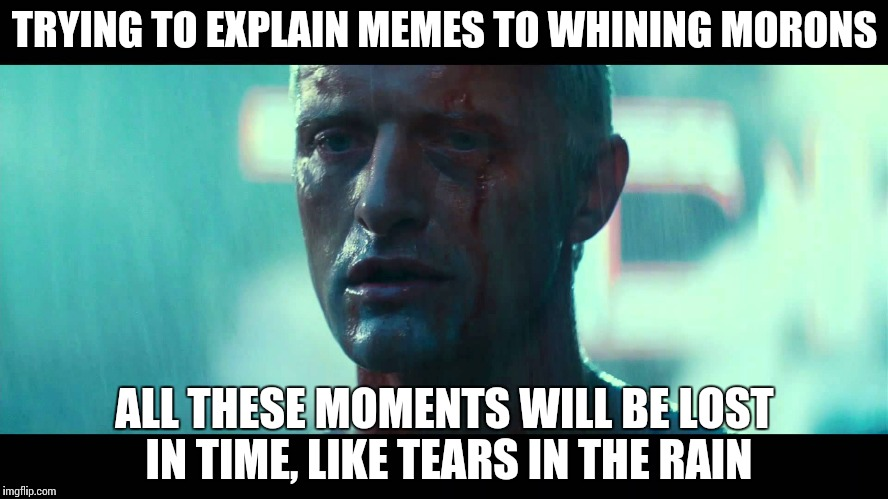 Ceci n'est pas une repost. | TRYING TO EXPLAIN MEMES TO WHINING MORONS ALL THESE MOMENTS WILL BE LOST IN TIME, LIKE TEARS IN THE RAIN | image tagged in tears in the rain,memes,funny,reposts,whining | made w/ Imgflip meme maker