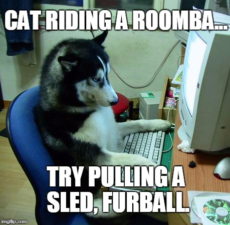 It appears that once again we find ourselves threatened by the great Cat Menace. | CAT RIDING A ROOMBA... TRY PULLING A SLED, FURBALL. | image tagged in memes,dog,cat | made w/ Imgflip meme maker