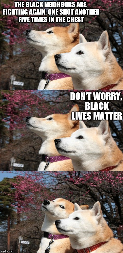 action expresses priorities - Ghandi | THE BLACK NEIGHBORS ARE FIGHTING AGAIN, ONE SHOT ANOTHER FIVE TIMES IN THE CHEST DON'T WORRY, BLACK LIVES MATTER | image tagged in bad pun dogs,memes,blm | made w/ Imgflip meme maker