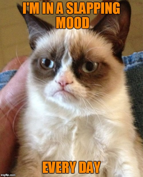 Grumpy Cat Meme | I'M IN A SLAPPING MOOD EVERY DAY | image tagged in memes,grumpy cat | made w/ Imgflip meme maker