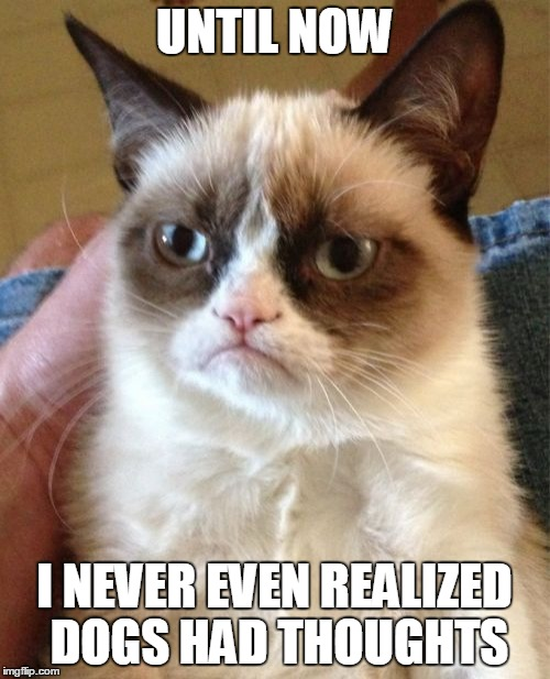 Grumpy Cat Meme | UNTIL NOW I NEVER EVEN REALIZED DOGS HAD THOUGHTS | image tagged in memes,grumpy cat | made w/ Imgflip meme maker