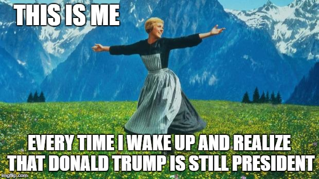 Julie Andrews | THIS IS ME EVERY TIME I WAKE UP AND REALIZE THAT DONALD TRUMP IS STILL PRESIDENT | image tagged in julie andrews | made w/ Imgflip meme maker