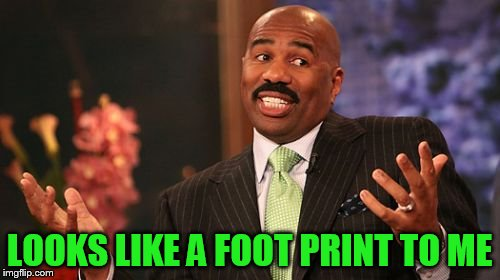 Steve Harvey Meme | LOOKS LIKE A FOOT PRINT TO ME | image tagged in memes,steve harvey | made w/ Imgflip meme maker