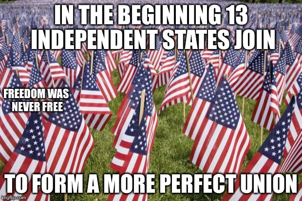 20,000 American Flags | IN THE BEGINNING 13 INDEPENDENT STATES JOIN TO FORM A MORE PERFECT UNION FREEDOM WAS NEVER FREE | image tagged in 20,000 american flags | made w/ Imgflip meme maker