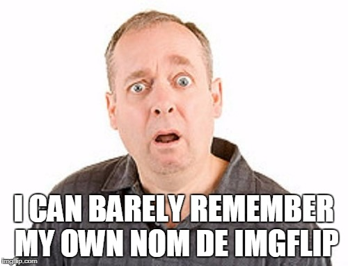 I CAN BARELY REMEMBER MY OWN NOM DE IMGFLIP | made w/ Imgflip meme maker