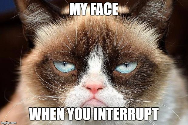 Grumpy Cat Not Amused Meme | MY FACE WHEN YOU INTERRUPT | image tagged in memes,grumpy cat not amused,grumpy cat | made w/ Imgflip meme maker
