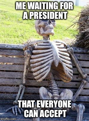 Waiting Skeleton Meme | ME WAITING FOR A PRESIDENT THAT EVERYONE CAN ACCEPT | image tagged in memes,waiting skeleton | made w/ Imgflip meme maker
