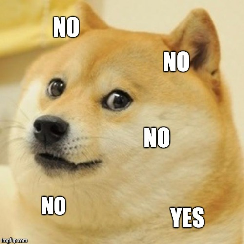 Doge Meme | NO NO NO NO YES | image tagged in memes,doge | made w/ Imgflip meme maker