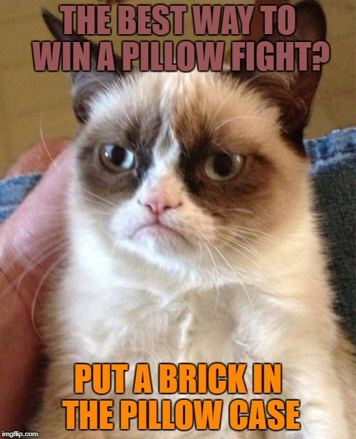 Grumpy Cat Meme | THE BEST WAY TO WIN A PILLOW FIGHT? PUT A BRICK IN THE PILLOW CASE | image tagged in memes,grumpy cat | made w/ Imgflip meme maker
