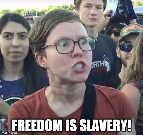 FREEDOM IS SLAVERY! | made w/ Imgflip meme maker