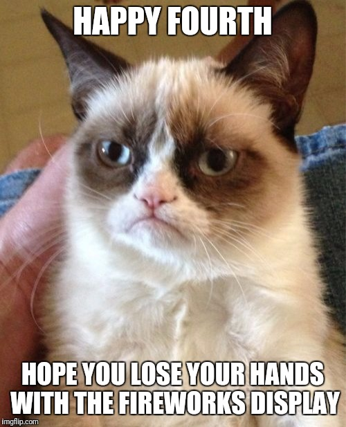 Grumpy Cat Meme | HAPPY FOURTH HOPE YOU LOSE YOUR HANDS WITH THE FIREWORKS DISPLAY | image tagged in memes,grumpy cat | made w/ Imgflip meme maker