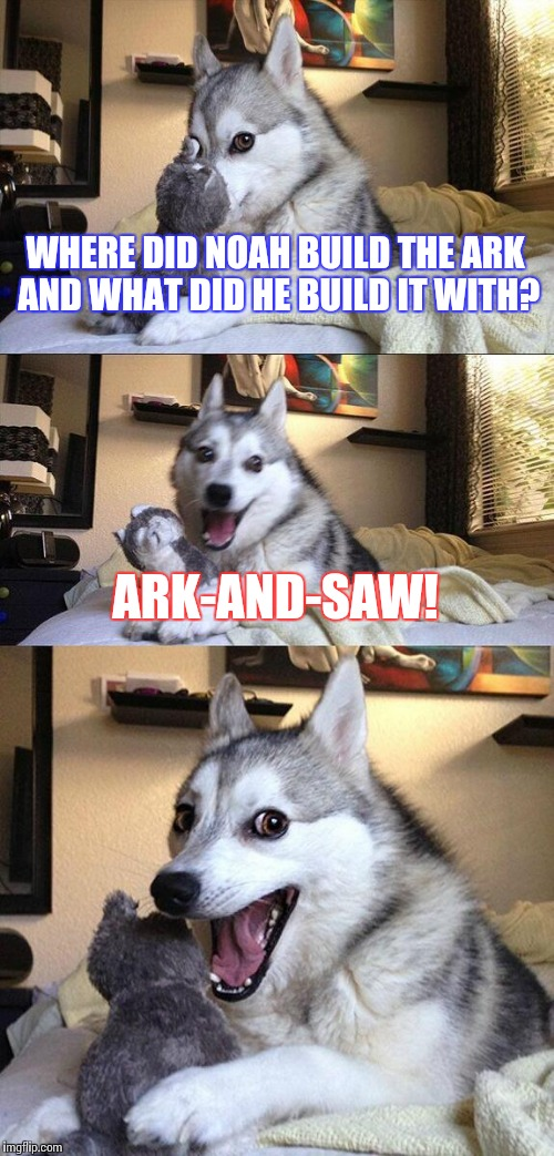 For people from said country, you're welcome. | WHERE DID NOAH BUILD THE ARK AND WHAT DID HE BUILD IT WITH? ARK-AND-SAW! | image tagged in memes,bad pun dog,funny,country | made w/ Imgflip meme maker