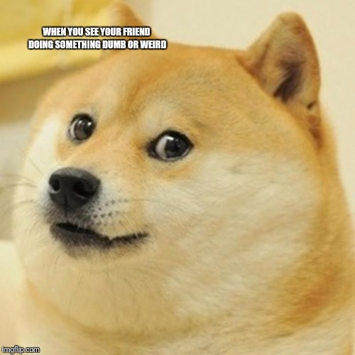 Doge Meme | WHEN YOU SEE YOUR FRIEND DOING SOMETHING DUMB OR WEIRD | image tagged in memes,doge | made w/ Imgflip meme maker