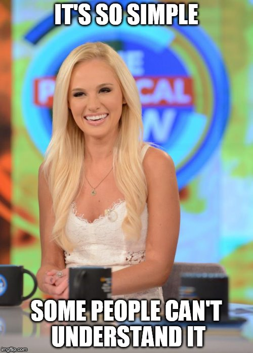 Tomi Lauren | IT'S SO SIMPLE SOME PEOPLE CAN'T UNDERSTAND IT | image tagged in tomi lauren | made w/ Imgflip meme maker