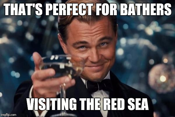 Leonardo Dicaprio Cheers Meme | THAT'S PERFECT FOR BATHERS VISITING THE RED SEA | image tagged in memes,leonardo dicaprio cheers | made w/ Imgflip meme maker