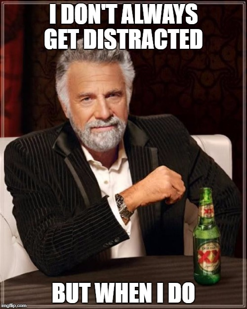 The Most Interesting Man In The World Meme | I DON'T ALWAYS GET DISTRACTED BUT WHEN I DO | image tagged in memes,the most interesting man in the world | made w/ Imgflip meme maker