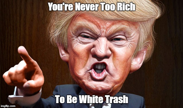 You're Never Too Rich To Be White Trash | made w/ Imgflip meme maker