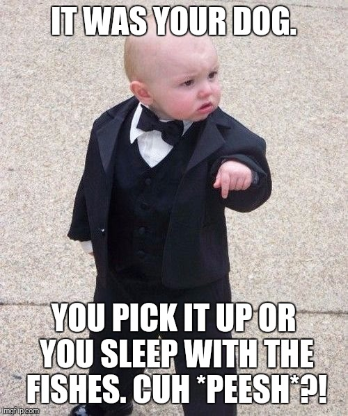 Baby Godfather doesn't play around. Get your poop scooper and plastic bag over there! :D | IT WAS YOUR DOG. YOU PICK IT UP OR YOU SLEEP WITH THE FISHES. CUH *PEESH*?! | image tagged in memes,baby godfather,funny,children,humor,child | made w/ Imgflip meme maker