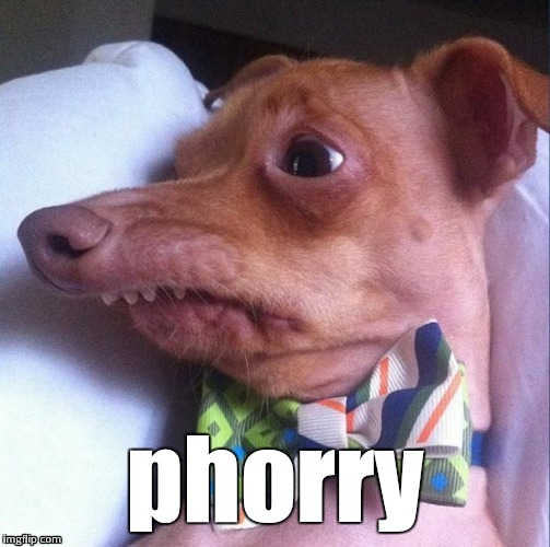 phorry | made w/ Imgflip meme maker