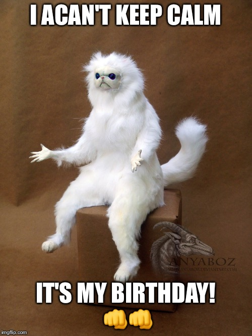 Persian Cat Room Guardian Single | I ACAN'T KEEP CALM IT'S MY BIRTHDAY!  | image tagged in memes,persian cat room guardian single | made w/ Imgflip meme maker