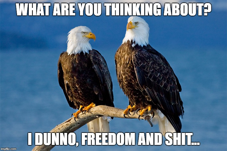 Freedom | WHAT ARE YOU THINKING ABOUT? I DUNNO, FREEDOM AND SHIT... | image tagged in 4th of july | made w/ Imgflip meme maker