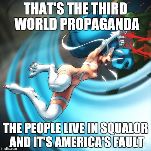 Cat girl Felicia | THAT'S THE THIRD WORLD PROPAGANDA THE PEOPLE LIVE IN SQUALOR AND IT'S AMERICA'S FAULT | image tagged in cat girl felicia | made w/ Imgflip meme maker