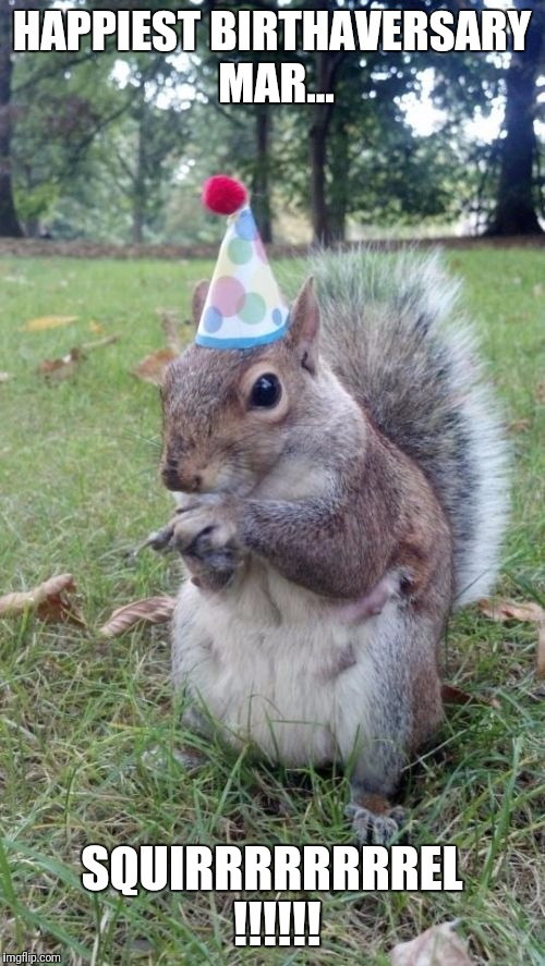 Super Birthday Squirrel | HAPPIEST BIRTHAVERSARY MAR... SQUIRRRRRRRREL !!!!!! | image tagged in memes,super birthday squirrel | made w/ Imgflip meme maker