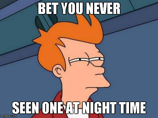 Futurama Fry Meme | BET YOU NEVER SEEN ONE AT NIGHT TIME | image tagged in memes,futurama fry | made w/ Imgflip meme maker
