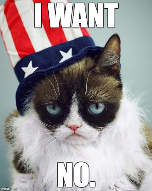 Grumpy 4th | I WANT NO. | image tagged in grumpy cat,4th of july,america | made w/ Imgflip meme maker