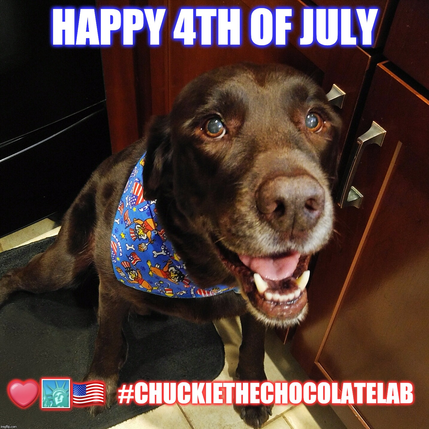 Happy 4th of July  |  HAPPY 4TH OF JULY; ❤️🗽🇺🇸   #CHUCKIETHECHOCOLATELAB | image tagged in happy 4th of july chuckie the chocolate lab,4th of july,fourth of july,dogs,chuckie the chocolate lab,usa | made w/ Imgflip meme maker