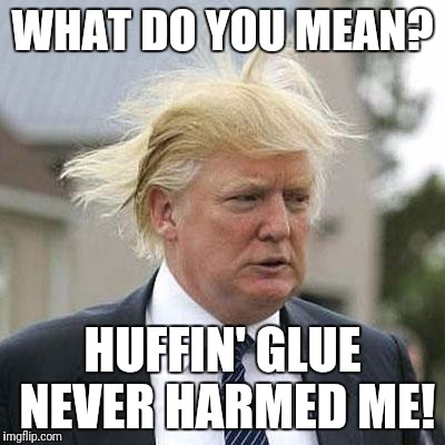 Donald Trump | WHAT DO YOU MEAN? HUFFIN' GLUE NEVER HARMED ME! | image tagged in donald trump | made w/ Imgflip meme maker