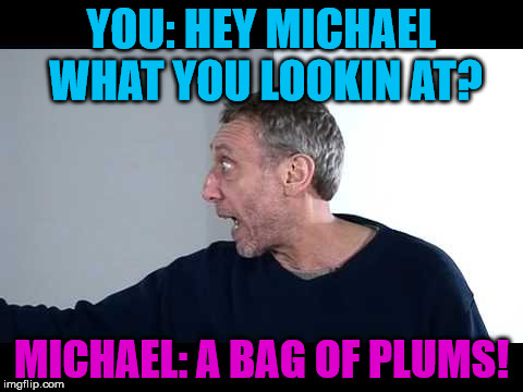 michael Rosen Looks At A BAG OF PLAMZ | YOU: HEY MICHAEL WHAT YOU LOOKIN AT? MICHAEL: A BAG OF PLUMS! | image tagged in michael,rosen,bag,of,plums,miechal rosen | made w/ Imgflip meme maker