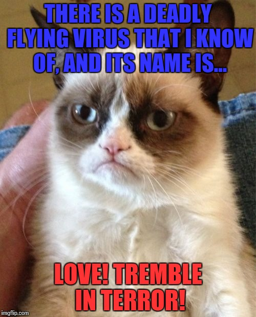 Grumpy Cat Meme | THERE IS A DEADLY FLYING VIRUS THAT I KNOW OF, AND ITS NAME IS... LOVE! TREMBLE IN TERROR! | image tagged in memes,grumpy cat | made w/ Imgflip meme maker