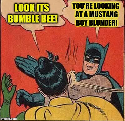 What I think when kids see my car | LOOK ITS BUMBLE BEE! YOU'RE LOOKING AT A MUSTANG BOY BLUNDER! | image tagged in memes,batman slapping robin | made w/ Imgflip meme maker