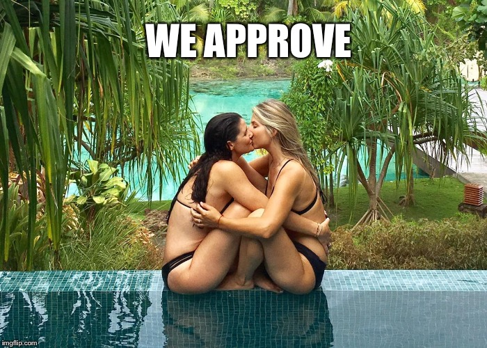WE APPROVE | made w/ Imgflip meme maker