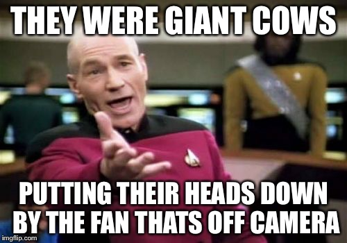 Picard Wtf Meme | THEY WERE GIANT COWS PUTTING THEIR HEADS DOWN BY THE FAN THATS OFF CAMERA | image tagged in memes,picard wtf | made w/ Imgflip meme maker