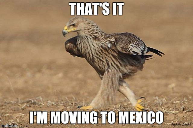THAT'S IT I'M MOVING TO MEXICO | made w/ Imgflip meme maker