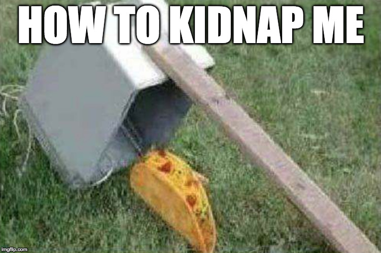 Add bacon and it'd work on me. | HOW TO KIDNAP ME | image tagged in iwanttobebacon,tacos,iwanttobebaconcom,kidnap | made w/ Imgflip meme maker