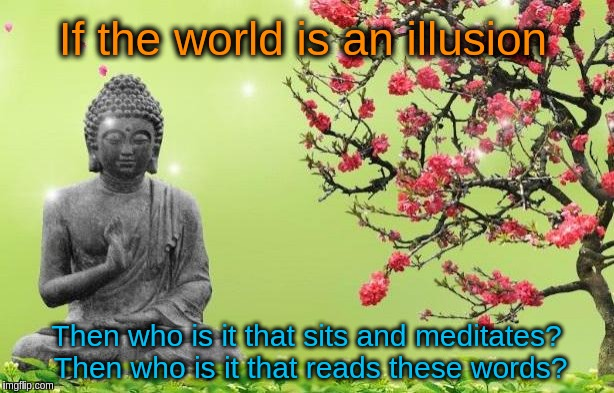 Who is it that is here? | If the world is an illusion Then who is it that sits and meditates? Then who is it that reads these words? | image tagged in buddhism,acim,illusion,meditation,body,zen | made w/ Imgflip meme maker