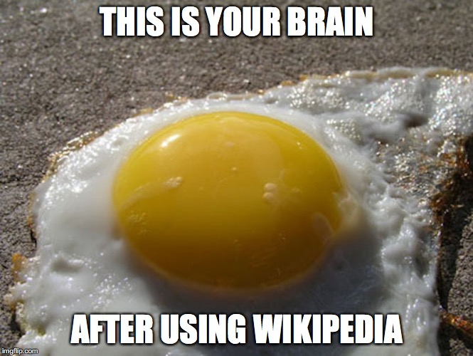 Fried Egg | THIS IS YOUR BRAIN AFTER USING WIKIPEDIA | image tagged in wikipedia,memes,fried eggs | made w/ Imgflip meme maker
