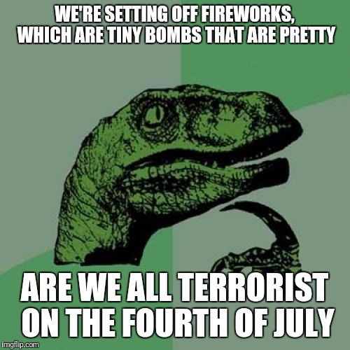 Philosoraptor Meme | WE'RE SETTING OFF FIREWORKS, WHICH ARE TINY BOMBS THAT ARE PRETTY ARE WE ALL TERRORIST ON THE FOURTH OF JULY | image tagged in memes,philosoraptor | made w/ Imgflip meme maker