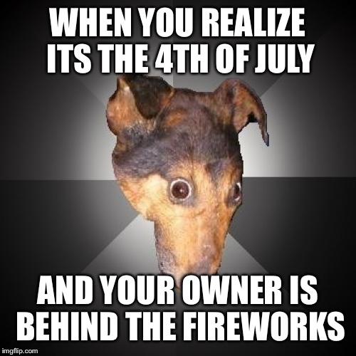 Depression Dog | WHEN YOU REALIZE ITS THE 4TH OF JULY AND YOUR OWNER IS BEHIND THE FIREWORKS | image tagged in memes,depression dog | made w/ Imgflip meme maker