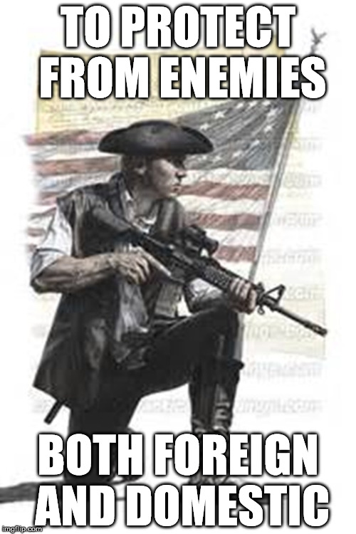 Veteran's Creed | TO PROTECT FROM ENEMIES BOTH FOREIGN AND DOMESTIC | image tagged in malitia,constitution,ar15 | made w/ Imgflip meme maker