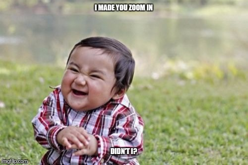 Evil Toddler Meme | I MADE YOU ZOOM IN DIDN'T I? | image tagged in memes,evil toddler | made w/ Imgflip meme maker