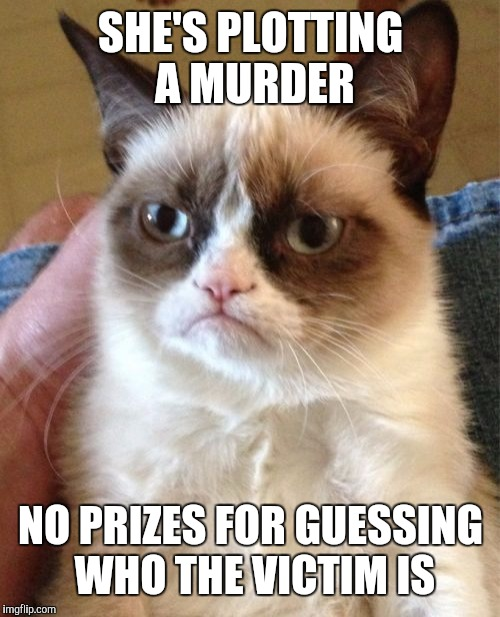 Grumpy Cat Meme | SHE'S PLOTTING A MURDER NO PRIZES FOR GUESSING WHO THE VICTIM IS | image tagged in memes,grumpy cat | made w/ Imgflip meme maker