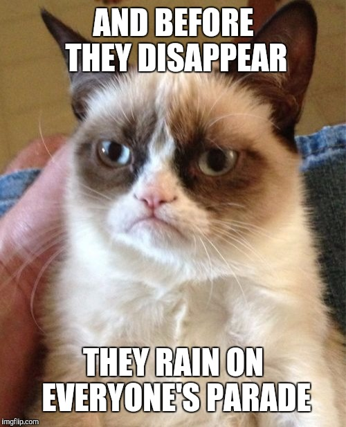 Grumpy Cat Meme | AND BEFORE THEY DISAPPEAR THEY RAIN ON EVERYONE'S PARADE | image tagged in memes,grumpy cat | made w/ Imgflip meme maker